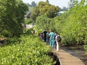 Global Missions in Panama students walking along wooden plank path